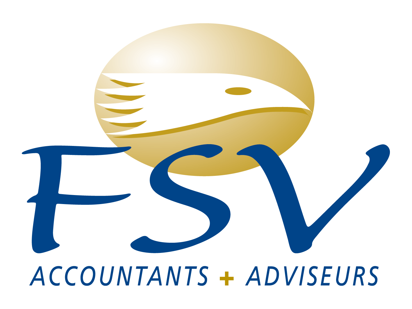 FSV Accountants & Adviseurs